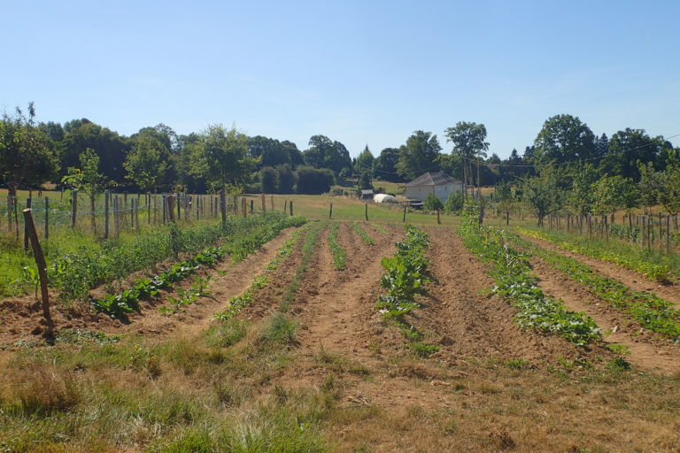 Carnets de campagne : l'agriculture périurbaine dans la communauté d'agglomération de Saint  Quentin en Yvelines