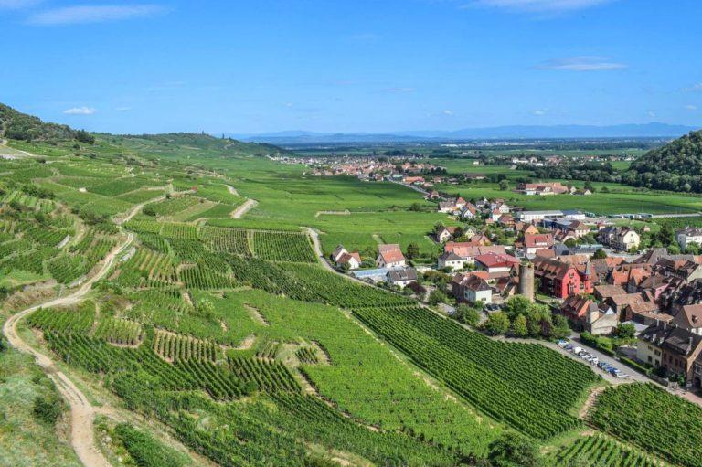 France Nature environnement : Comment la ville de Thann-Cernay a réduit ses déchets de 60 % ?